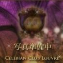 綾乃 詩織|セレビアンクラブ 倶楽部ルーブル - 渋谷風俗