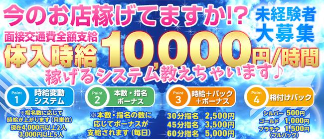 新宿ミルキー(新宿・歌舞伎町ピンサロ店)の風俗求人・高収入バイト求人PR画像1