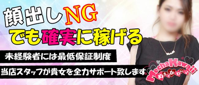 めちゃかわいい(松江)のデリヘル求人・高収入バイトPR画像1