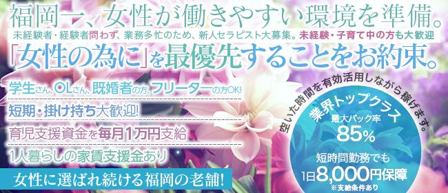 aroma hareyaka - 福岡市・博多