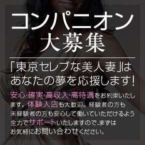 東京セレブな美人妻 - 品川
