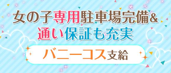 バニーコレクション新潟店(新潟・新発田ソープ店)の風俗求人・高収入バイト求人PR画像3