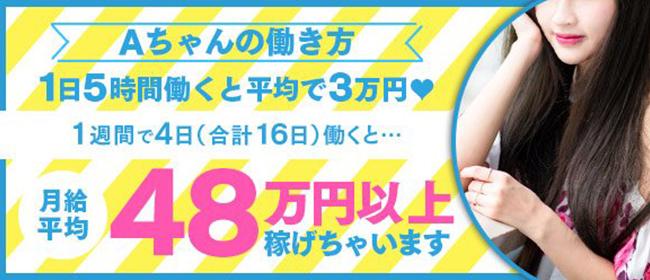 Vacation(サンライズグループ)(岡山市内デリヘル店)の風俗求人・高収入バイト求人PR画像2