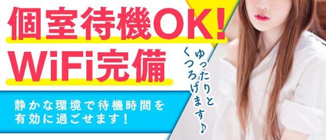 Vacation(サンライズグループ)(岡山市内デリヘル店)の風俗求人・高収入バイト求人PR画像3