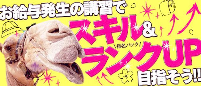 紳士の嗜み 立川(立川デリヘル店)の風俗求人・高収入バイト求人PR画像2