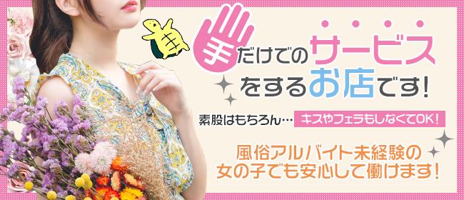 もしもし亀よ亀さんよ 名古屋店(名古屋)のデリヘル求人・高収入バイトPR画像2