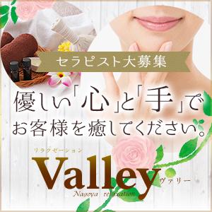 Valley ~ヴァリー~ - 名古屋