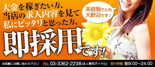 いいなり奥様(大久保・新大久保ホテヘル店)の風俗求人・高収入バイト求人PR画像1