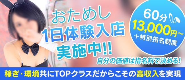 ドMなバニーちゃん 名古屋・池下店(名古屋店舗型ヘルス店)の風俗求人・高収入バイト求人PR画像3