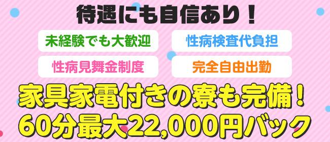 おねだり萌えっ娘(中洲・天神ソープ店)の風俗求人・高収入バイト求人PR画像2