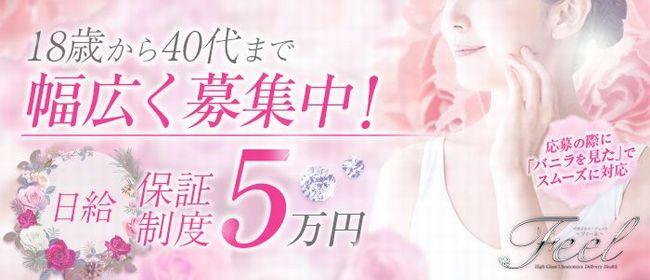 フィール(Feel)(宇都宮デリヘル店)の風俗求人・高収入バイト求人PR画像1