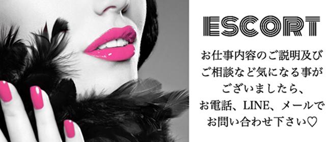 エスコート(富山市近郊)のデリヘル求人・高収入バイトPR画像1