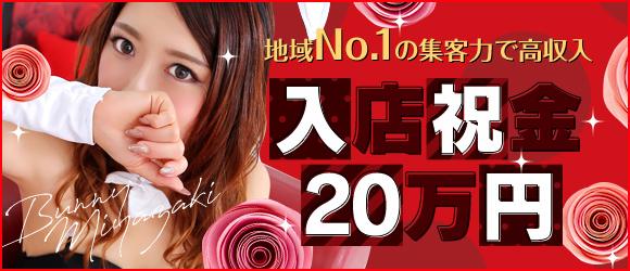 ドMなバニーちゃん宮崎店(宮崎市近郊ソープ店)の風俗求人・高収入バイト求人PR画像2