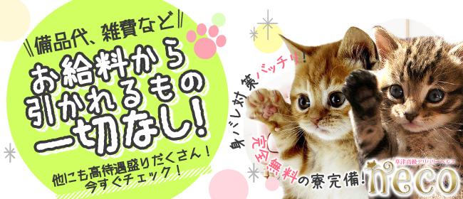 neco(草津・守山デリヘル店)の風俗求人・高収入バイト求人PR画像1