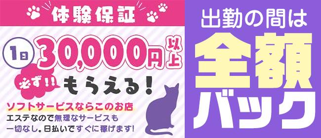回春性感メンズエステ猫の手 名古屋駅/納屋橋