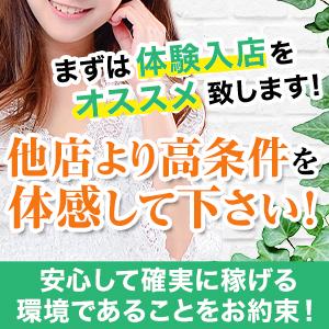 ドMな奥様たち - 平塚