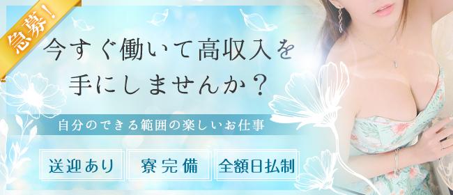 マーメイド(宇都宮ピンサロ店)の風俗求人・高収入バイト求人PR画像1
