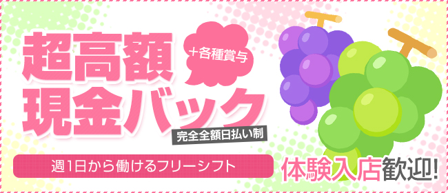 アイドルマスカット(神奈川県その他)のピンサロ求人・高収入バイトPR画像1