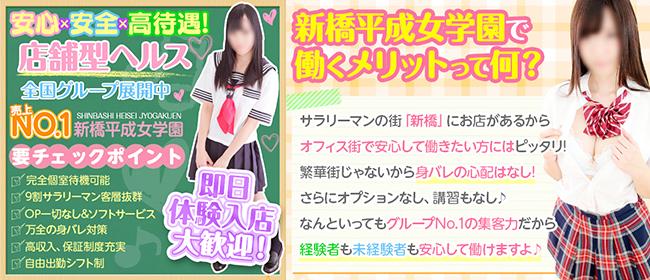 新橋平成女学園(新橋・汐留)の店舗型ヘルス求人・高収入バイトPR画像3