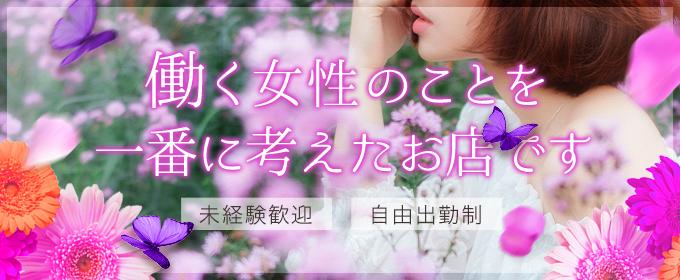 プレジール(熊本市内一般メンズエステ(店舗型)店)の風俗求人・高収入バイト求人PR画像1