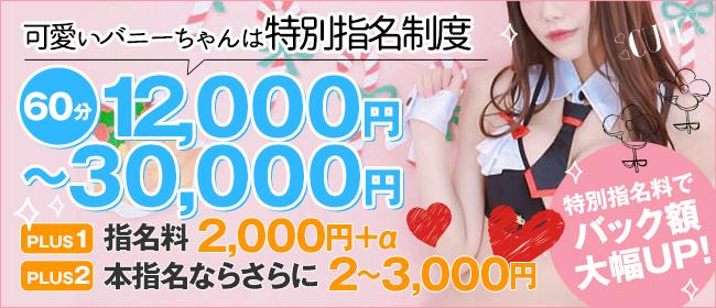 バニーコレクション秋田(秋田市近郊ソープ店)の風俗求人・高収入バイト求人PR画像3