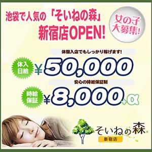 そいねの森 新宿店 - 新宿・歌舞伎町