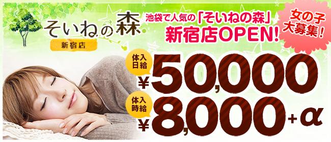 そいねの森 新宿店(新宿・歌舞伎町デリヘル店)の風俗求人・高収入バイト求人PR画像1