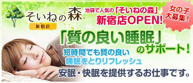 そいねの森 新宿店(新宿・歌舞伎町デリヘル店)の風俗求人・高収入バイト求人PR画像2
