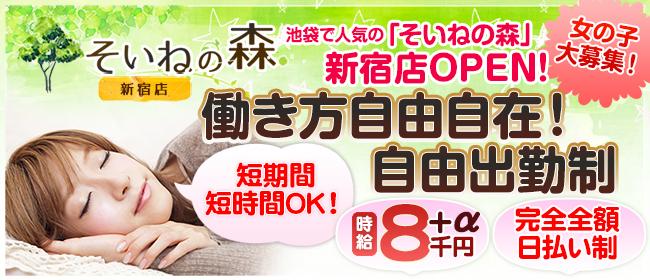そいねの森 新宿店(新宿・歌舞伎町デリヘル店)の風俗求人・高収入バイト求人PR画像3