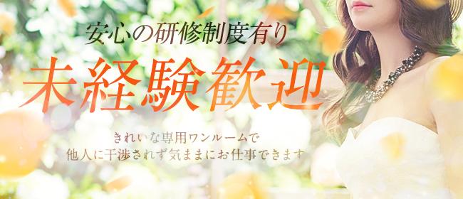 MINERVA(福岡市・博多一般メンズエステ(店舗型)店)の風俗求人・高収入バイト求人PR画像3