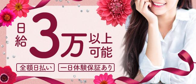 マダムダイアリー(浜松デリヘル店)の風俗求人・高収入バイト求人PR画像1