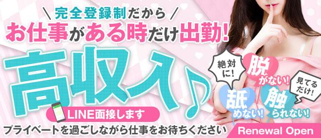 罵倒るClub キャットアイ(尼崎・西宮デリヘル店)の風俗求人・高収入バイト求人PR画像1