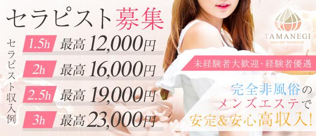TAMANEGI 大阪店(タマネギ)(日本橋・千日前)の一般メンズエステ(店舗型)求人・高収入バイトPR画像2