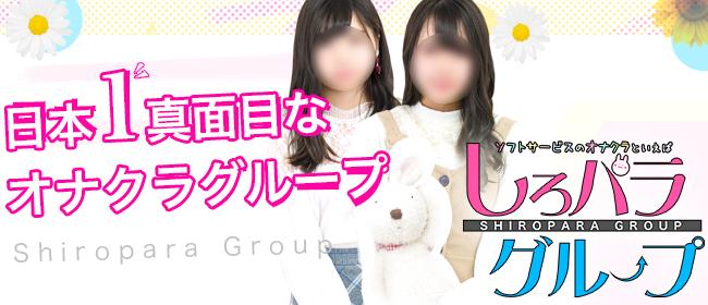しろパラ@(新宿・歌舞伎町デリヘル店)の風俗求人・高収入バイト求人PR画像2