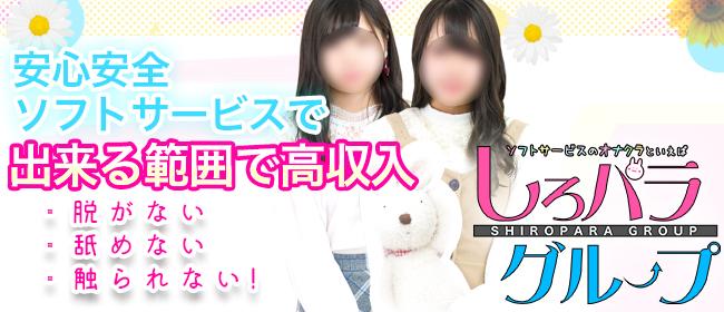 しろパラ@(新宿・歌舞伎町デリヘル店)の風俗求人・高収入バイト求人PR画像3