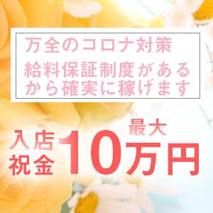 エミシャイン - 四条烏丸・烏丸御池・京都駅