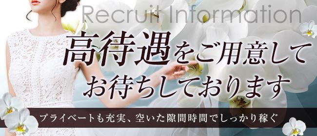 ファレノプシス(熊本市内デリヘル店)の風俗求人・高収入バイト求人PR画像1