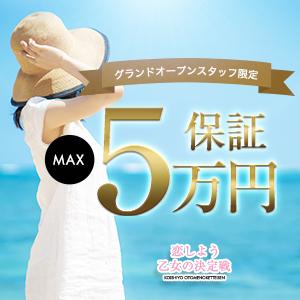 恋しよう 乙女の決定戦 - 岡崎・豊田(西三河)