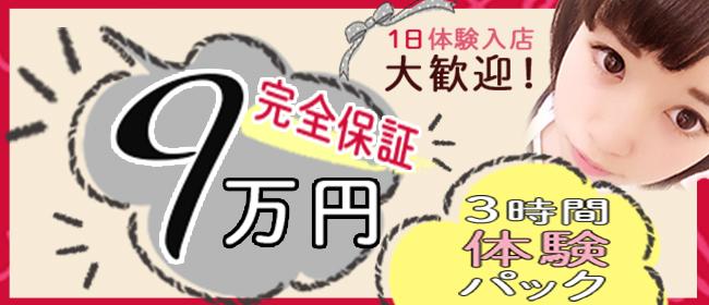 添い寝VIPプラチナム(池袋デリヘル店)の風俗求人・高収入バイト求人PR画像2