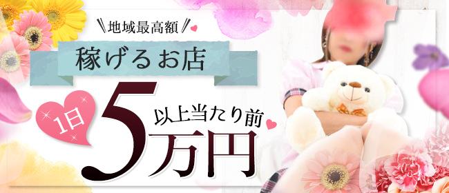 DIE-SEL&Mrs.亀山伊賀店(亀山・関)のデリヘル求人・高収入バイトPR画像1