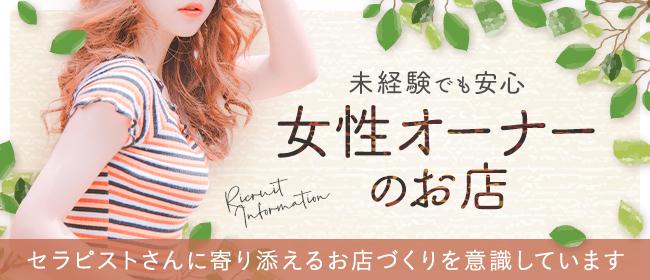 Miss Bunny - 日本橋・茅場町・人形町