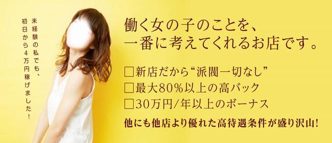 日立 僕だけの彼女(日立デリヘル店)の風俗求人・高収入バイト求人PR画像1