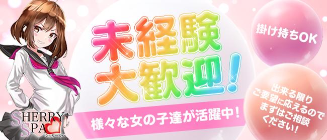 SherrySpa~シェリースパ(福岡市・博多)の一般メンズエステ(店舗型)求人・高収入バイトPR画像2