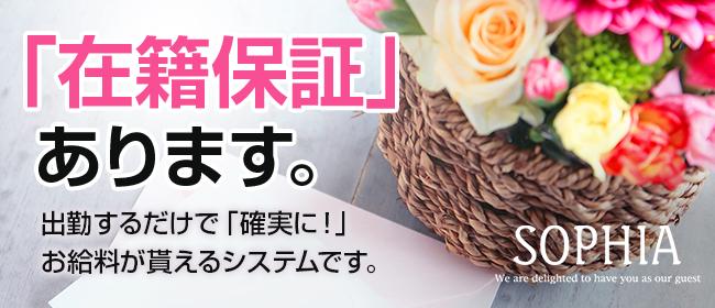 SOPHIA(新宿・歌舞伎町)の店舗型ヘルス求人・高収入バイトPR画像3