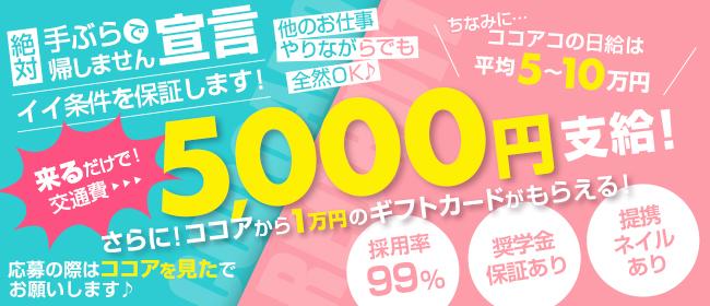 CoCoaco(ココアコ) 大阪本店(日本橋・千日前)のデリヘル求人・高収入バイトPR画像1