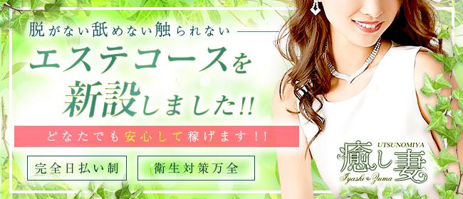 癒し妻(宇都宮)のデリヘル求人・高収入バイトPR画像3