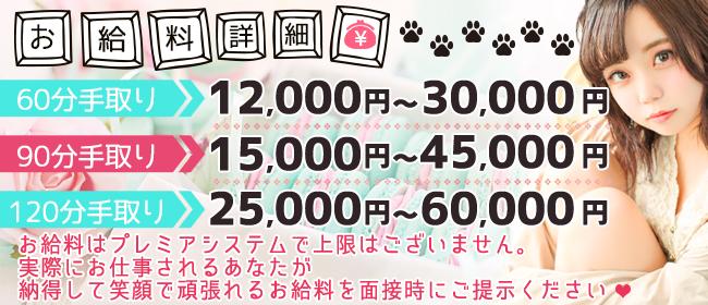 やんちゃな子猫 日本橋店(日本橋・千日前)のホテヘル求人・高収入バイトPR画像3