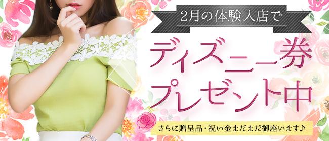 デザインヴィオラ(品川デリヘル店)の風俗求人・高収入バイト求人PR画像2