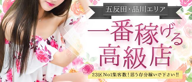 デザインヴィオラ(品川デリヘル店)の風俗求人・高収入バイト求人PR画像3