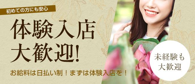 ドMな奥様 名古屋池下店(名古屋)の店舗型ヘルス求人・高収入バイトPR画像2